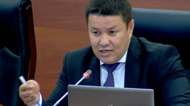 Талант Мамытов депутаттарды Конституцияны эмес, референдумду талкуулоого үндөдү