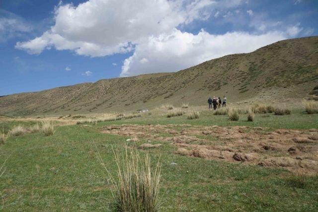 Жеке менчике берилип кеткен 16 гектар жер мамлекетке кайтарылды