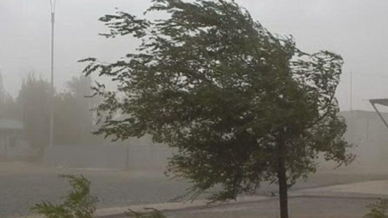 Шашылыш билдирүү: Бишкекте катуу шамал болот