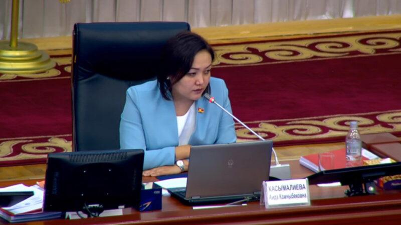 Аида Касымалиева: Жогорку Кеңештин депутаттарынын кармалуусу, Баш мыйзамга туура келбейт