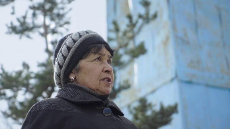 """Время активных граждан\ Диляра Наровна: """"Кто, если не мы?"""""""