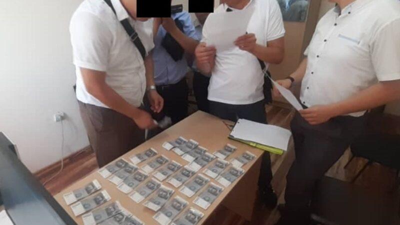 ИИМдин тергөөчүсү 500 доллар пара алып жаткан жеринен кармалды