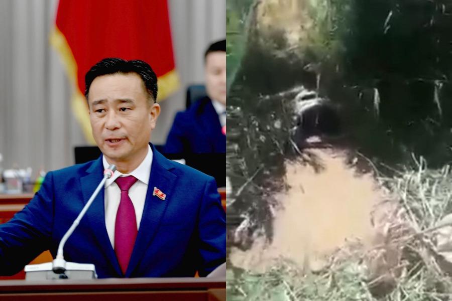 Видео: Өзбекстанга түтүктөр менен суу уурдап бергендер кимдер? Ким текшерет?