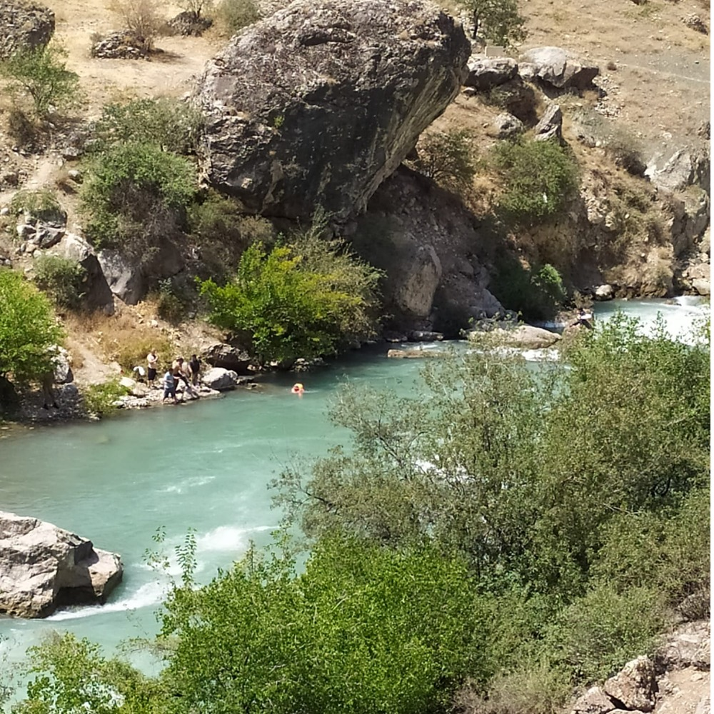 Кызын куткарам деген апасы, сиңдиси менен Ак-Буура дарыясына агып каза болду