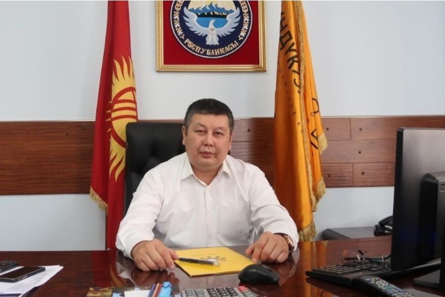 """Азамат Кожомкулов """"Түндүк электрге"""" башкы директору болуп дайындалды"""