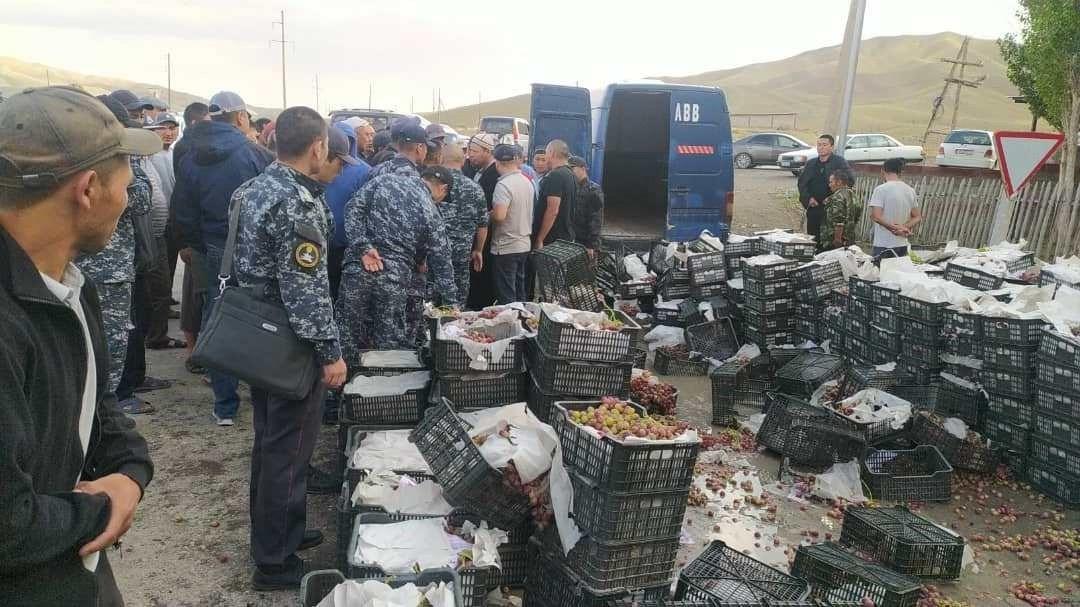Баткенде 4,5 тонна аткезчилик менен ташылган жүзүм кармалды