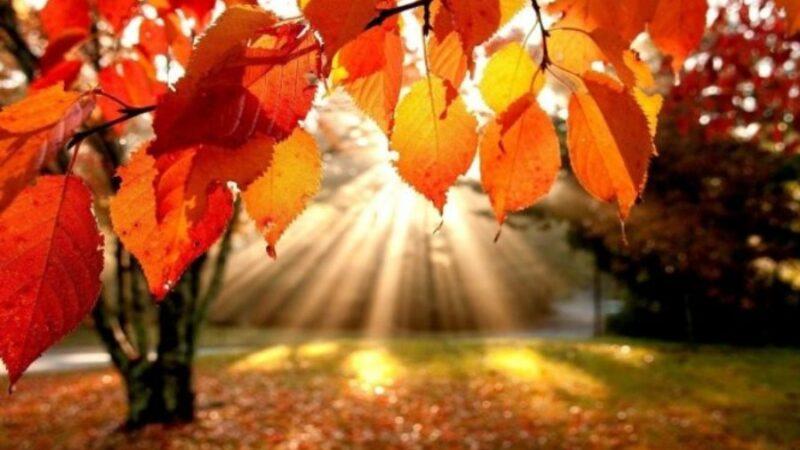 Октябрь айында абанын табы 20 градуска жетет